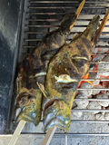 Herbs marinaded fresh Trout fish on stick grilling on BBQ red ch Stock Photography