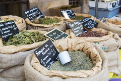 Herbs in the market Stock Image