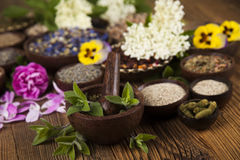Herbs medicine and vintage wooden background Stock Photo