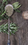 Herbs Metal Spoon. Fresh herbs surrounding antique metal spoon filled with dried herbs on rustic wood background Stock Photography