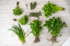 Herbs mix on the table top view royalty free stock photography