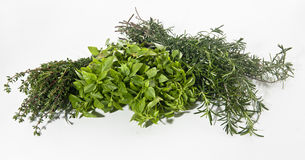 Herbs. Mix of herbs on white bachground Stock Image
