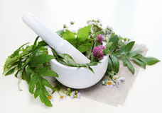 Herbs and Mortar Stock Photography