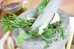 Herbs in mortar Stock Photo