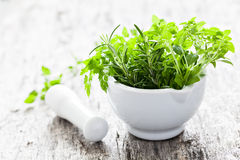 Herbs in a mortar Stock Image