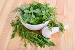Herbs in mortar Stock Images