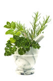 Herbs with mortar and pestle Royalty Free Stock Photo