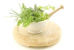 Herbs in Mortar with Pestle Royalty Free Stock Photography