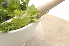Herbs Mortar and Pestle - Lframe royalty free stock photo