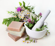 Herbs in Mortar with Soap Royalty Free Stock Image
