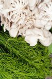 Herbs and mushrooms at asian market Royalty Free Stock Photography