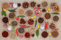 Herbs n Spices is Nice Stock Images