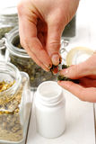 Herbs, natural remedies Stock Images