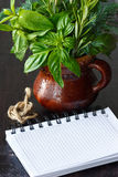 Herbs and notebook. Royalty Free Stock Image