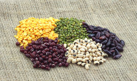 Herbs and Nuts. Cuisine ingredients - herbs and spices Royalty Free Stock Photo