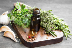 Herbs Oil for Alternative Medicine and Immune System Stock Images