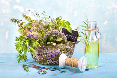 Herbs and oil Stock Images