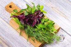 Herbs On Wooden Chopping Board: Parsley, Mint, Basil And Dill. Stock Photo
