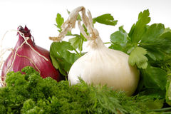 Herbs and onions. As close-up Stock Photos