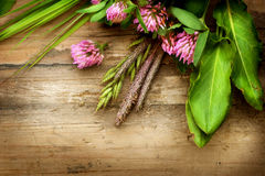 Herbs over Wood Royalty Free Stock Photos