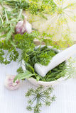 Herbs in the pestle and garlic on the table Royalty Free Stock Photography