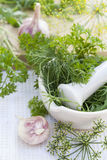 Herbs in the pestle and garlic on the table Stock Photo