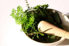 Herbs with pestle and mortar. Photograph of fresh herbs with a pestle and mortar Stock Photo