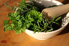 Herbs with pestle and mortar Royalty Free Stock Photos