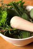 Herbs with pestle and mortar Royalty Free Stock Image