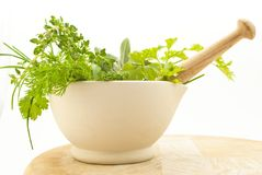 Herbs Pestle and Mortar Closeup Royalty Free Stock Images