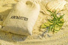 Herbs of Provence at a beach Stock Image