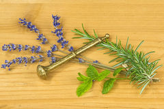 Herbs of Provence, lavender and rosemary Royalty Free Stock Images
