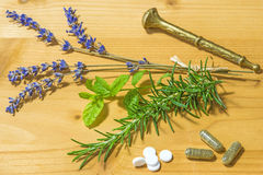 Herbs of Provence, lavender and rosemary Stock Image
