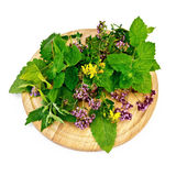 Herbs on a round board Stock Images
