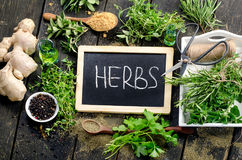 Herbs on a rustic wooden background Royalty Free Stock Image