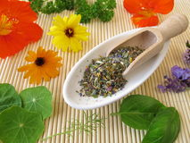 Herbs salt with edible flowers Royalty Free Stock Photography