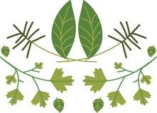 Herbs & Seasonings Stock Images