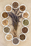 Herbs for Sleeping and Anxiety Stock Photography
