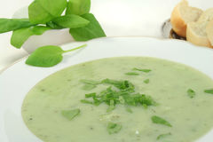 Herbs soup Royalty Free Stock Photo