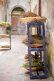 Herbs and species in Essaouira, Moroco Stock Images