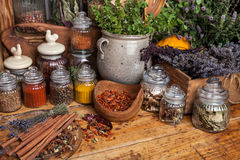 Herbs and spice royalty free stock images