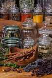 Herbs and spice royalty free stock photography