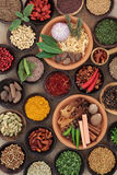Herbs and Spice is Nice Stock Images