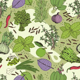 Herbs and spice seamless pattern Stock Photo