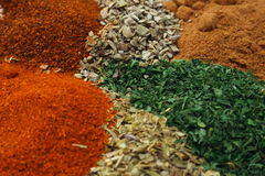 Herbs and Spices. A mixture of chilli powder paprika nutmeg sage and oregano Royalty Free Stock Photography