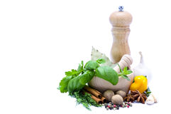Herbs and spices Royalty Free Stock Images