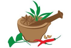 Herbs and Spices. An illustration of herbs and spices Stock Images