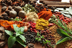 Herbs and spices Royalty Free Stock Image