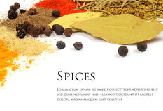 Herbs and spices. Several types of herbs and spices royalty free stock images
