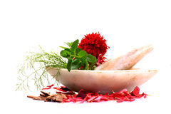 Herbs and spices. With stone mortar Royalty Free Stock Photo
